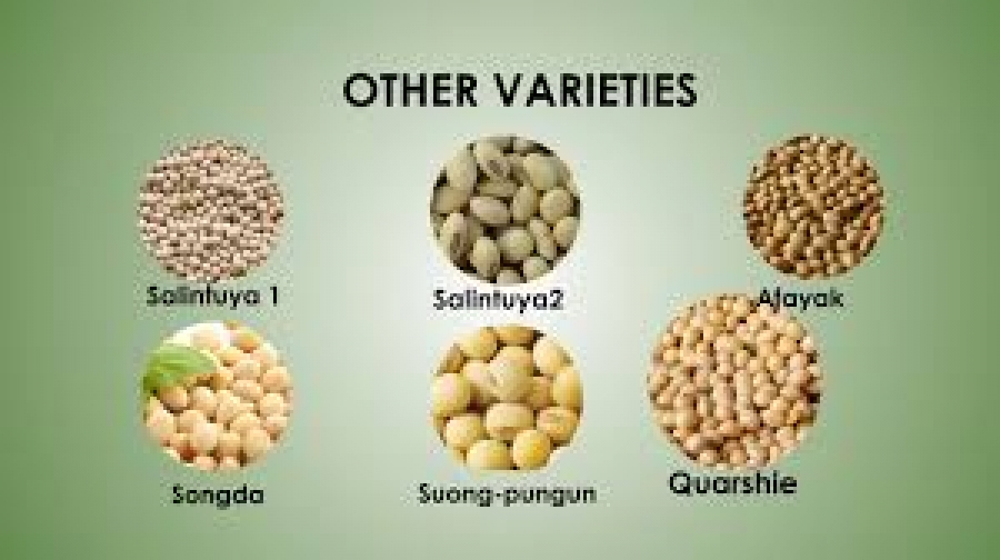 AGRONOMY OF SOYBEAN